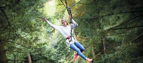 15% off the multi-award winning Tree Top Adventure