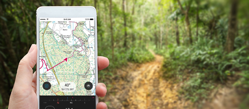 20% off 12 month digital map subscription