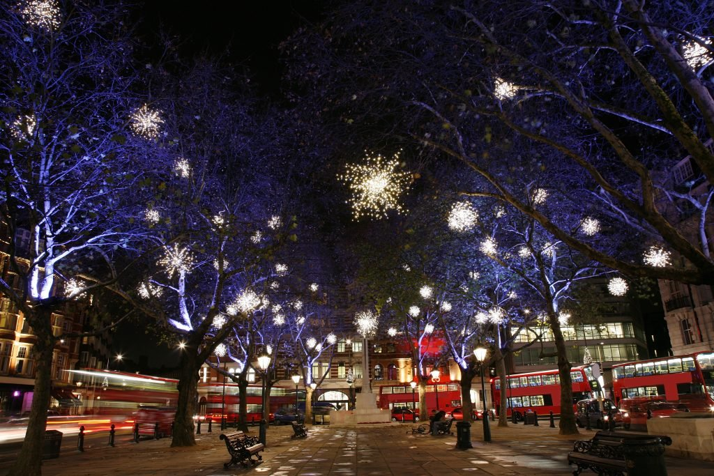 Trees with Christmas lights and several London buses