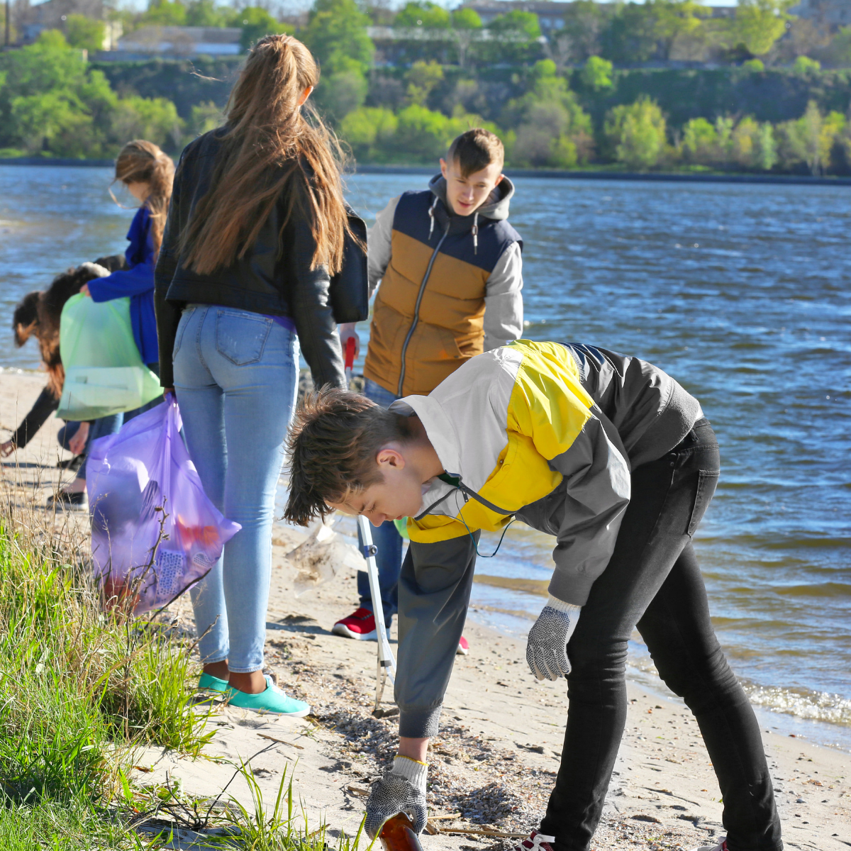 Group of volunteers litter picking along a coastline