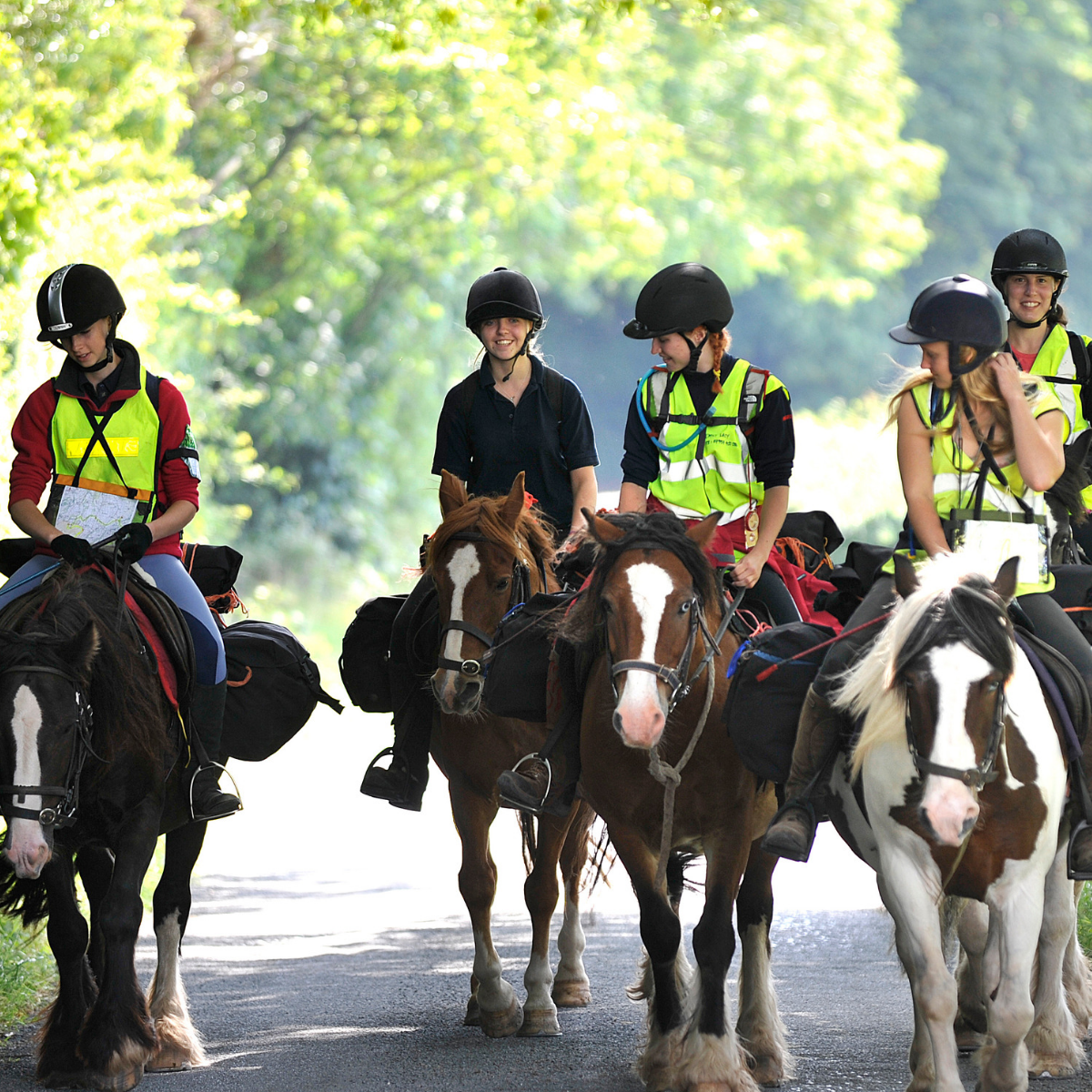 Group of young girls horseriding wearing high-vis jackets